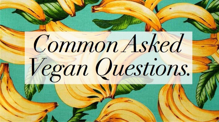 Common Asked Vegan Questions.